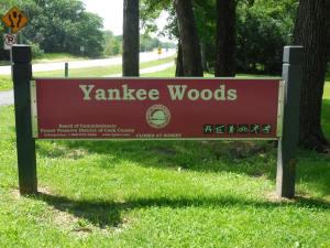 yankeewoods