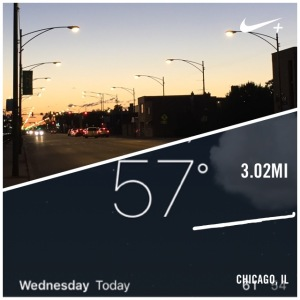 ChicagoMarathonTrainingRecap43
