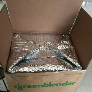 GreenBlenderReview1